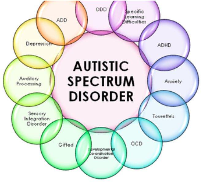 asd-associated-disorders